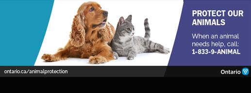 Timmins & District Humane Society