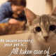 Why Pet Health Insurance? As pet parents, we all believe we'll be able to protect our pets from harm. If you really think about it, you'll realize that no matter how much love and care […]